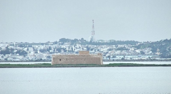 800px-Chikli_Island_-_Lake_of_Tunis. small